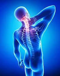 Neuromuscular Pain Relief Center Orlando