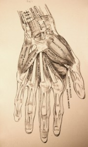 carpal tunnel / Neuromuscular Pain Relief Center