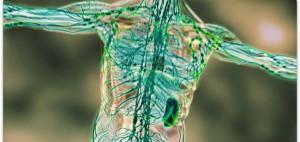 Lyme Disease Treatment Orlando